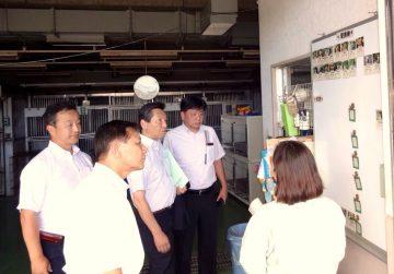 平成28年8月25日(木) 熊本市の動物愛護センターで殺処分ゼロの取り組みについて